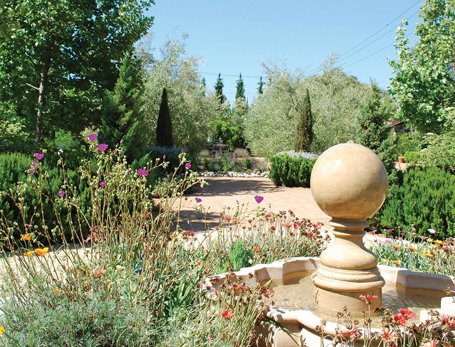 Discovering Arlington Gardens A Scene For Serenity In Pasadena